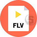GetFLV Pro 15.5868.556 ذخیره سازی و نمایش فایل FLV