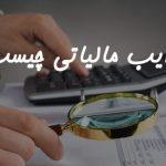 ضرایب مالیاتی چیست؟